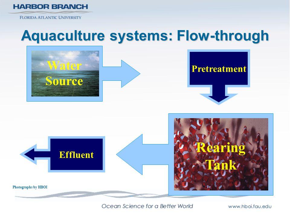 Aquaculture systems: Flow-through