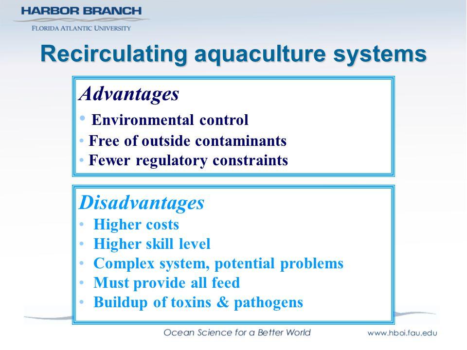 Recirculating aquaculture systems