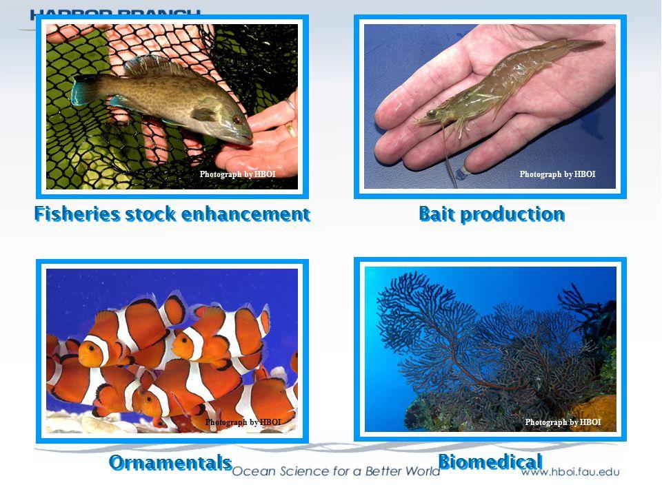 Fisheries stock enhancement
