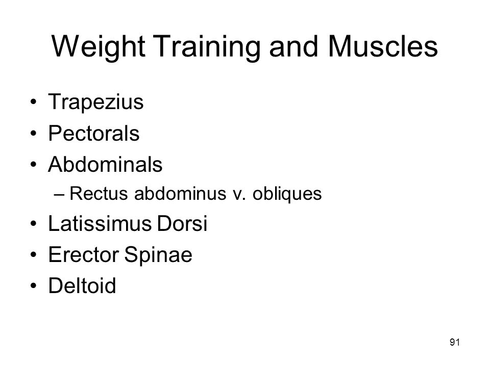Weight Training and Muscles