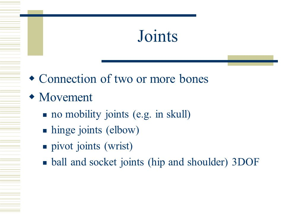 Joints Connection of two or more bones Movement