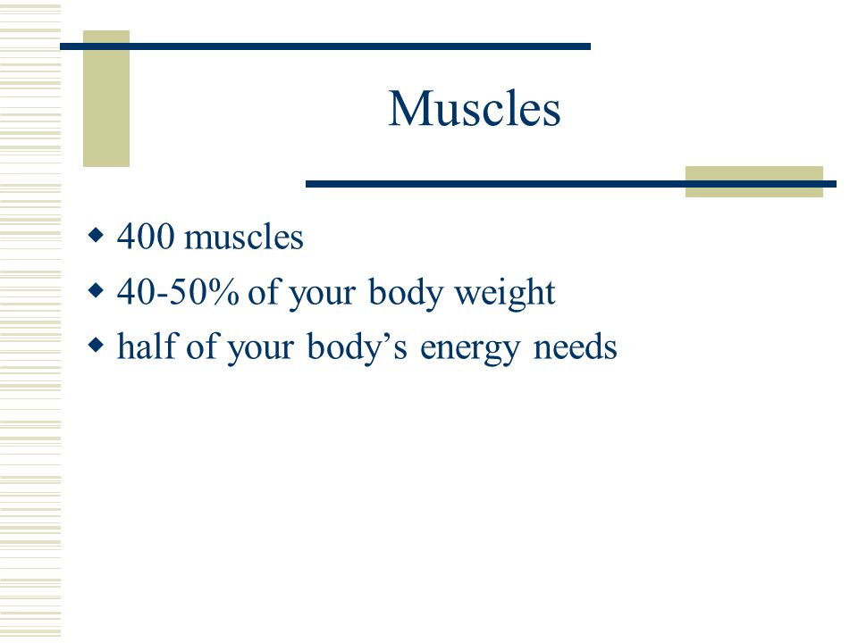 Muscles 400 muscles 40-50% of your body weight