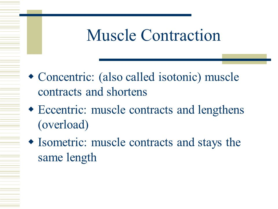 Muscle Contraction Concentric: (also called isotonic) muscle contracts and shortens. Eccentric: muscle contracts and lengthens (overload)