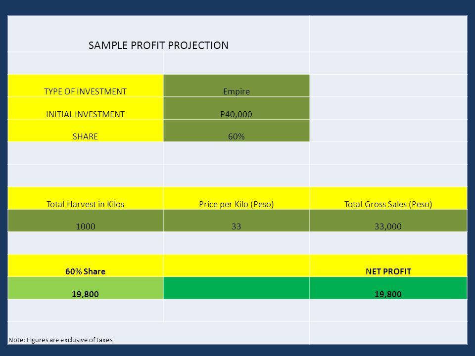 SAMPLE PROFIT PROJECTION