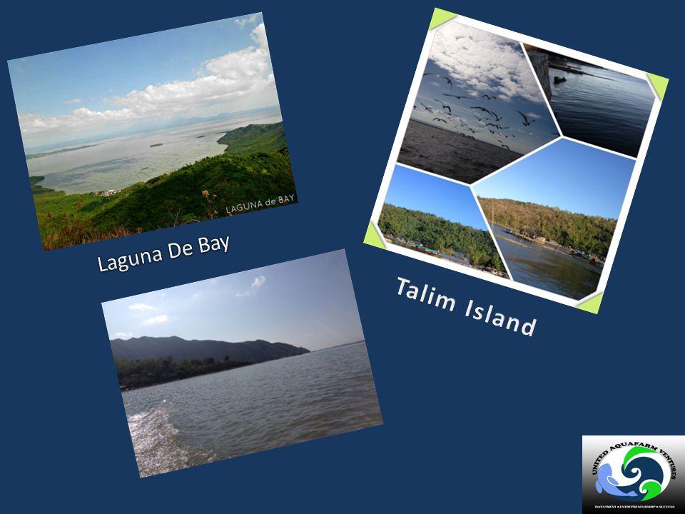 Laguna De Bay Talim Island