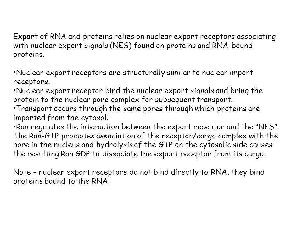 Export of RNA and proteins relies on nuclear export receptors associating with nuclear export signals (NES) found on proteins and RNA-bound proteins.
