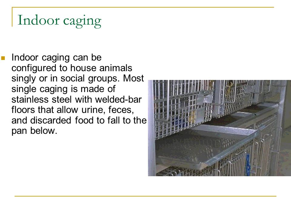 Indoor caging