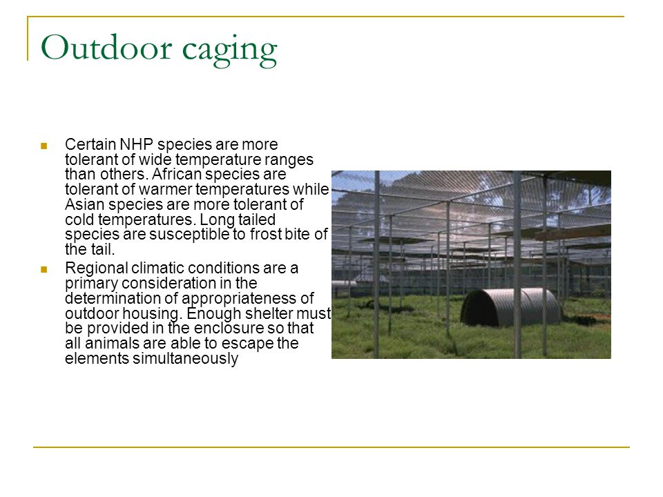 Outdoor caging
