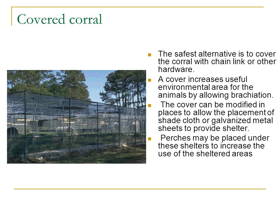 Covered corral The safest alternative is to cover the corral with chain link or other hardware.