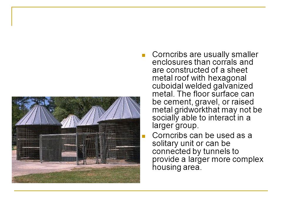 Corncribs are usually smaller enclosures than corrals and are constructed of a sheet metal roof with hexagonal cuboidal welded galvanized metal. The floor surface can be cement, gravel, or raised metal gridworkthat may not be socially able to interact in a larger group.