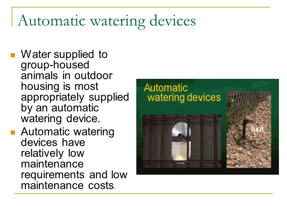 Automatic watering devices