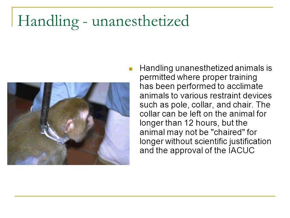 Handling - unanesthetized