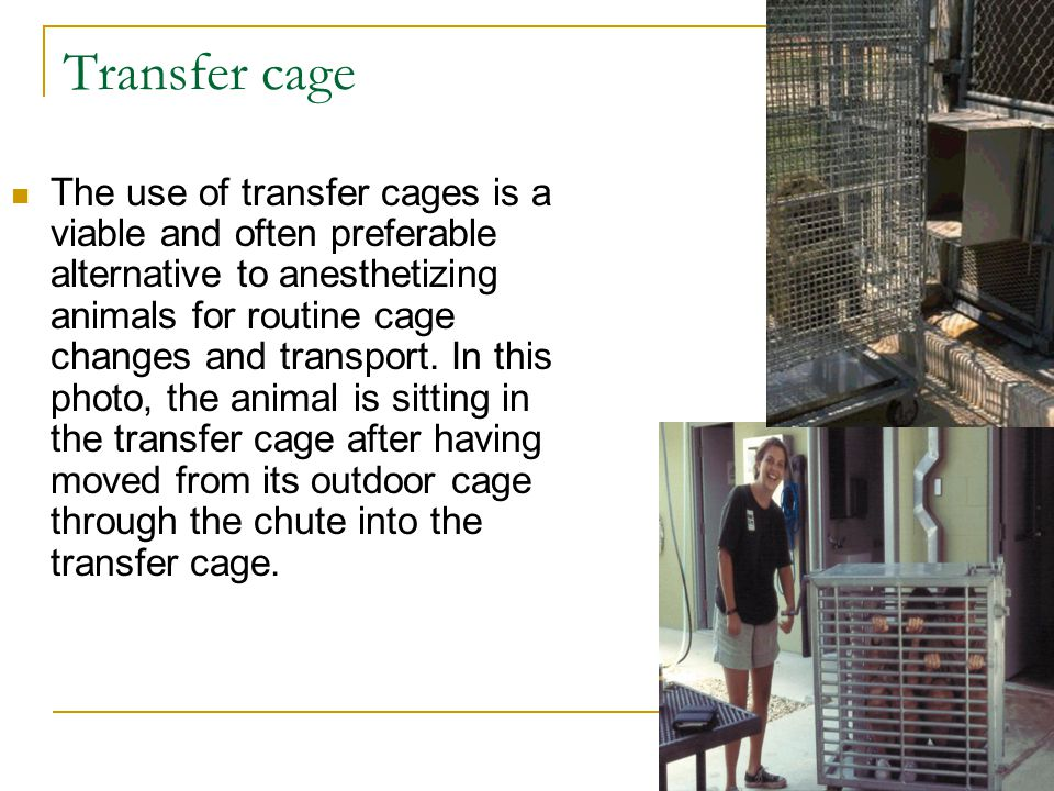 Transfer cage