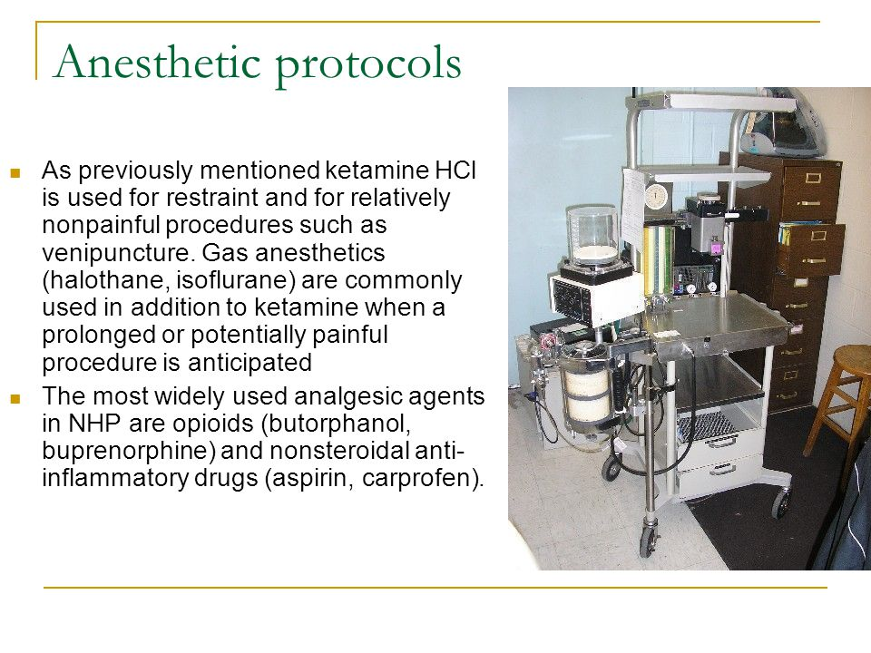 Anesthetic protocols