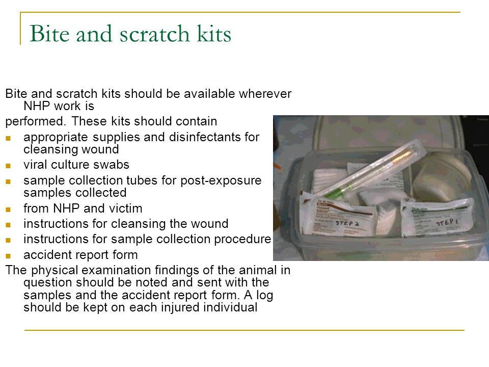 Bite and scratch kits Bite and scratch kits should be available wherever NHP work is. performed. These kits should contain.