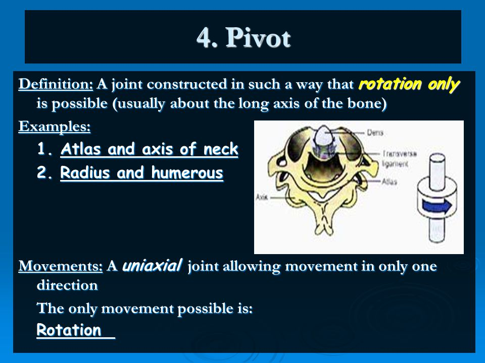 4. Pivot Definition: A joint constructed in such a way that rotation only is possible (usually about the long axis of the bone)