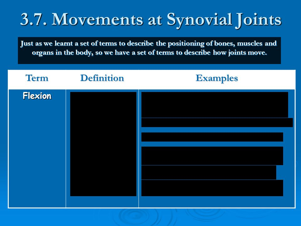 3.7. Movements at Synovial Joints
