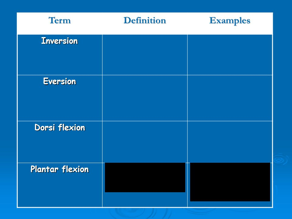 Term Definition Examples