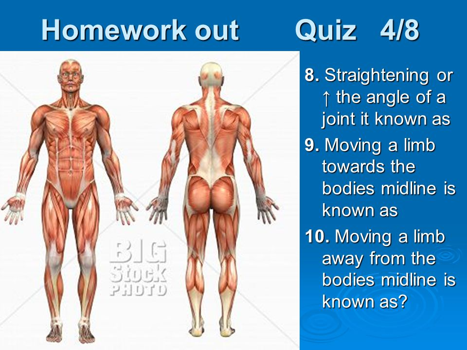 Homework out Quiz 4/8 8. Straightening or ↑ the angle of a joint it known as. 9. Moving a limb towards the bodies midline is known as.