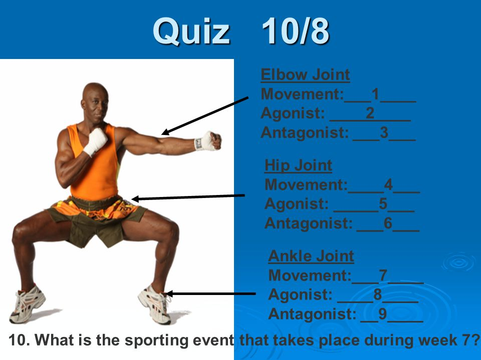 Quiz 10/8 Elbow Joint Movement:___1____ Agonist: ____2____