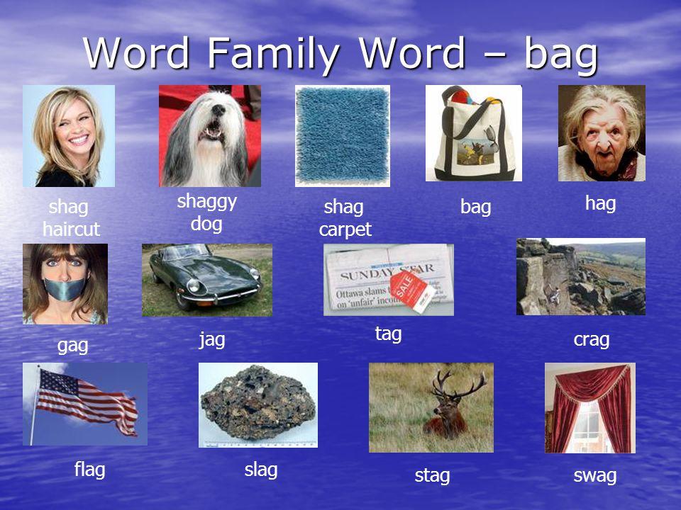 Word Family Word – bag shag haircut carpet shaggy dog shag bag hag tag