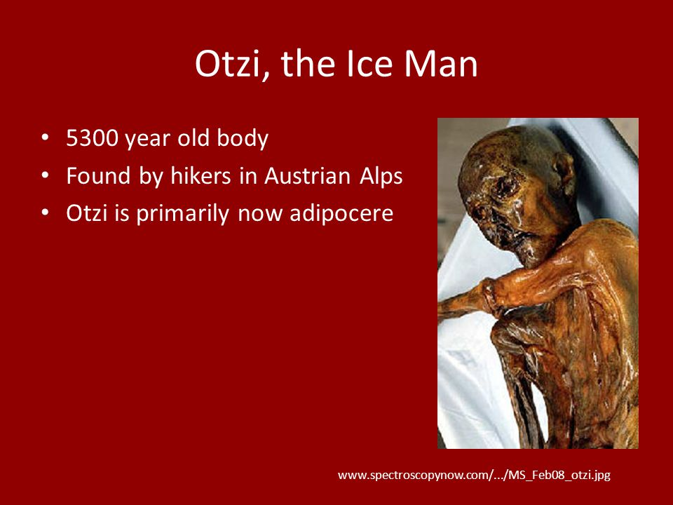 Otzi, the Ice Man 5300 year old body Found by hikers in Austrian Alps