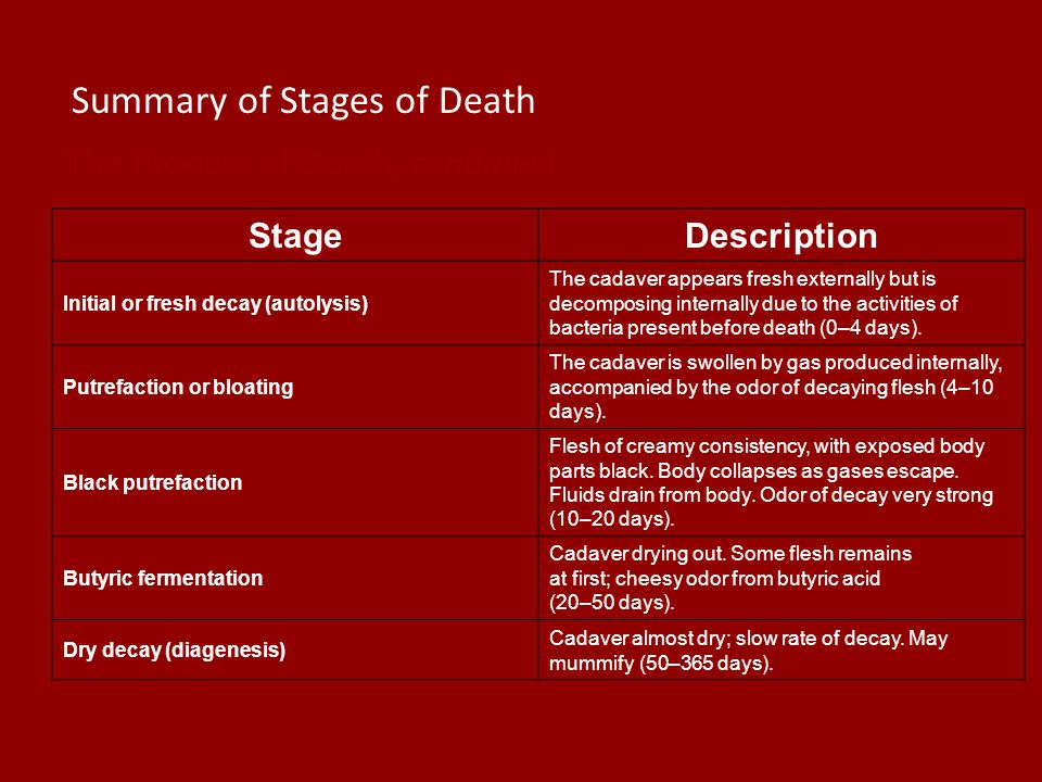 Summary of Stages of Death