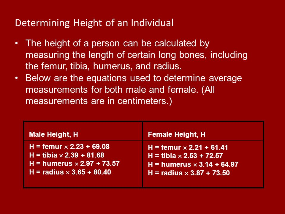 Determining Height of an Individual