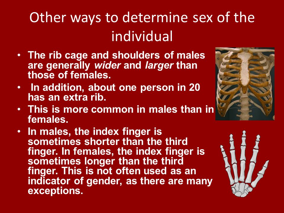 Other ways to determine sex of the individual