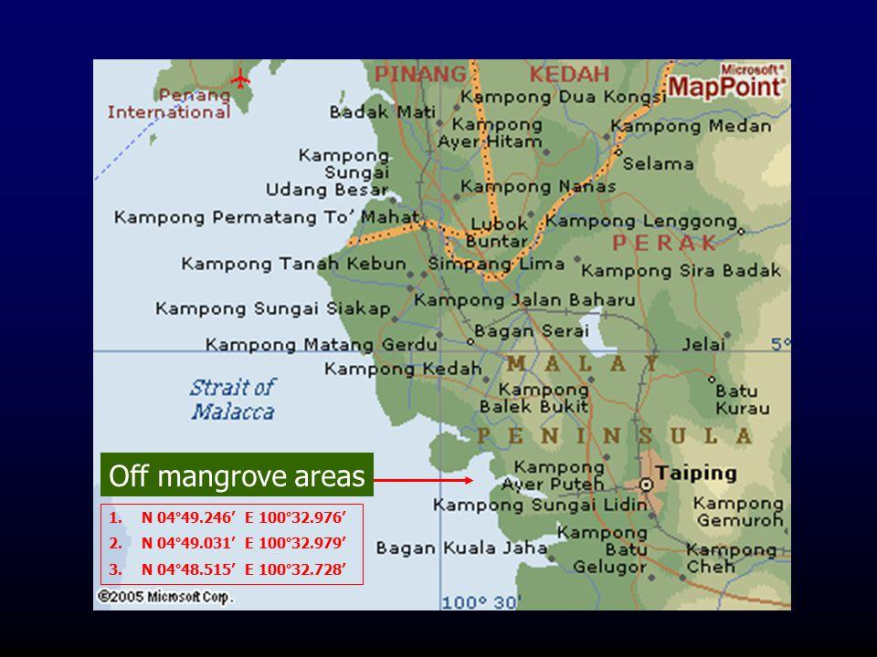 Off mangrove areas N 04°49.246' E 100°32.976'