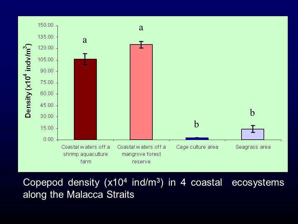 a a b b Copepod density (x104 ind/m3) in 4 coastal ecosystems along the Malacca Straits