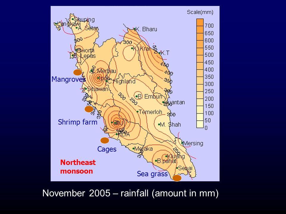November 2005 – rainfall (amount in mm)