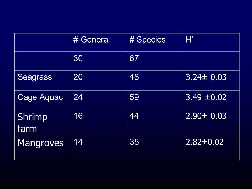 Shrimp farm Mangroves # Genera # Species H' 30 67 Seagrass 20 48