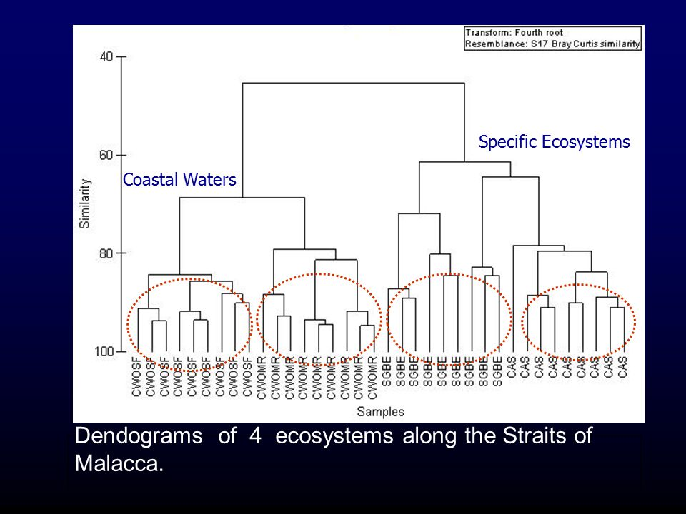 Dendograms of 4 ecosystems along the Straits of Malacca.