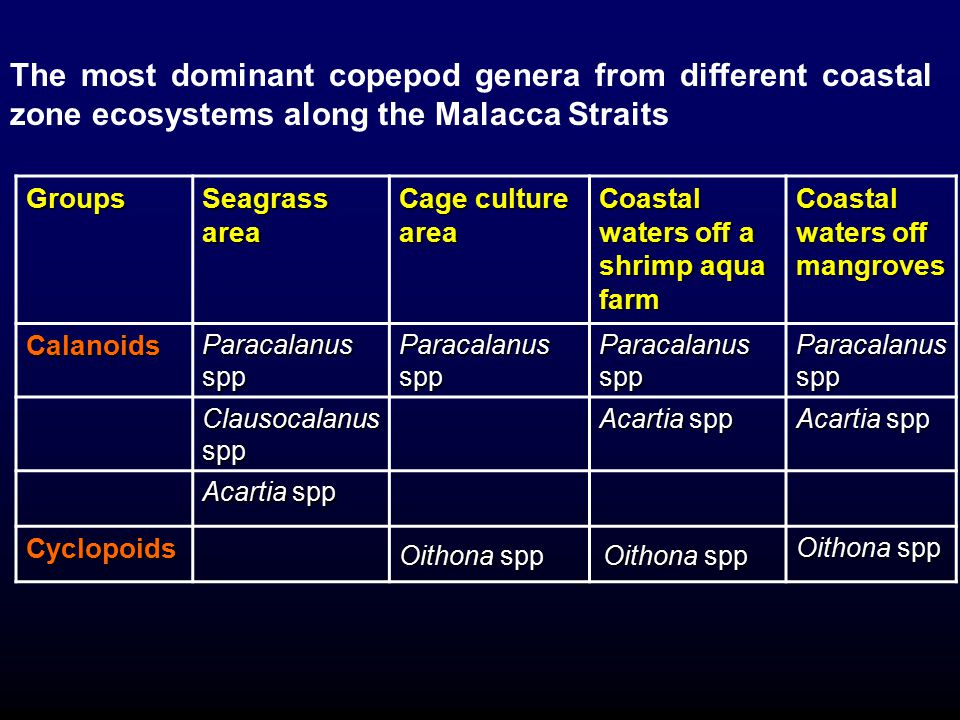 The most dominant copepod genera from different coastal zone ecosystems along the Malacca Straits