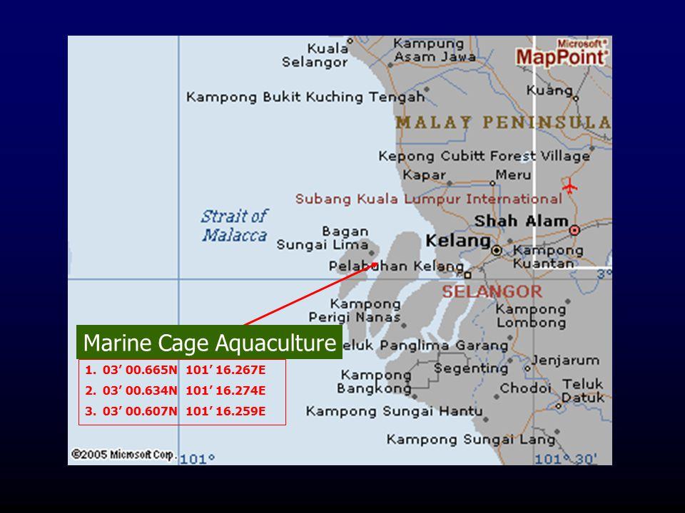Marine Cage Aquaculture