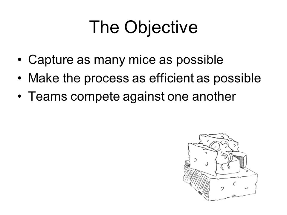 The Objective Capture as many mice as possible