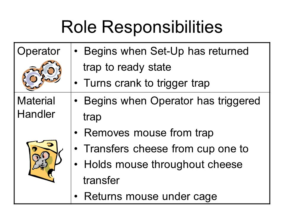 Role Responsibilities