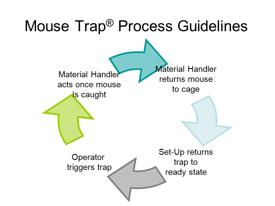 Mouse Trap® Process Guidelines