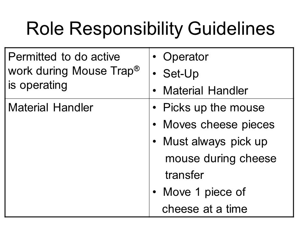 Role Responsibility Guidelines