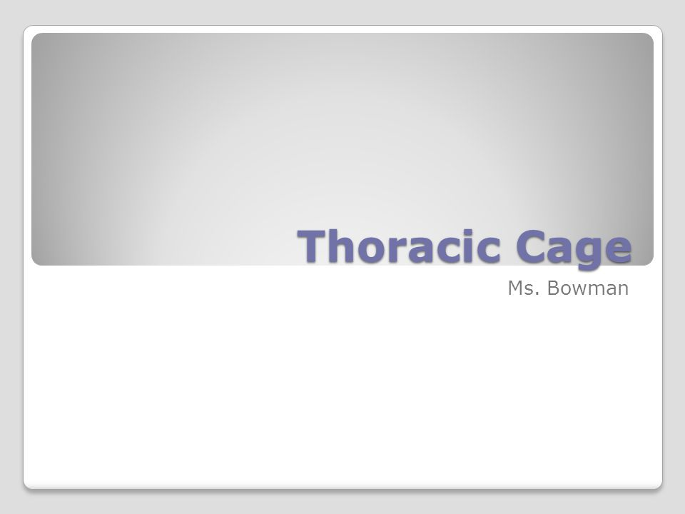 Thoracic Cage Ms. Bowman