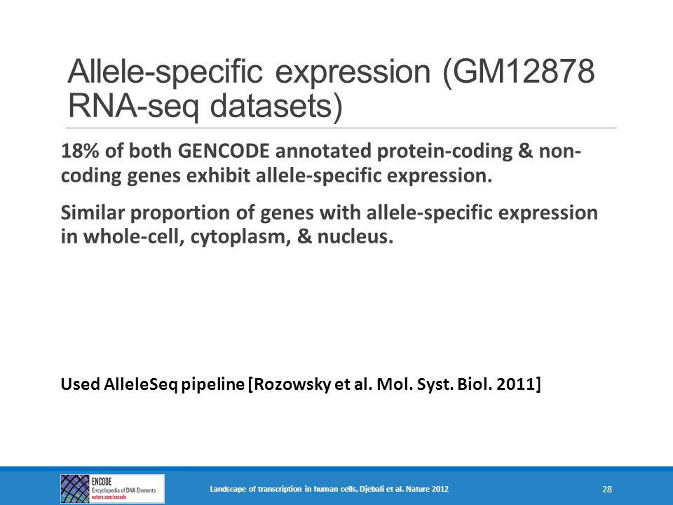 Allele-specific expression (GM12878 RNA-seq datasets)