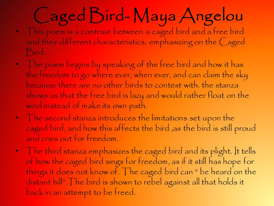 maya angelous caged bird The first volume of maya angelou's autobiography is proof of her inner strength and a testament to the power of words, writes anita sethi.