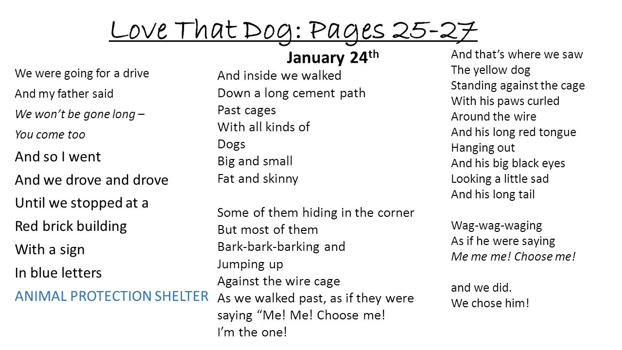 Love That Dog: Pages 25-27 January 24th And so I went