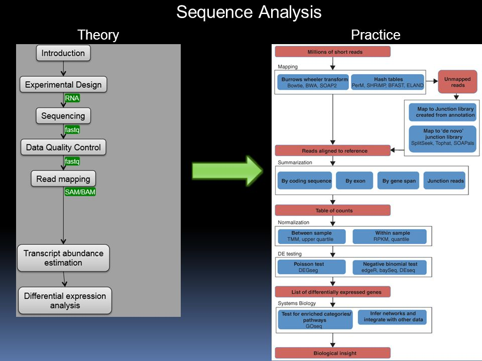 Sequence Analysis Theory Practice