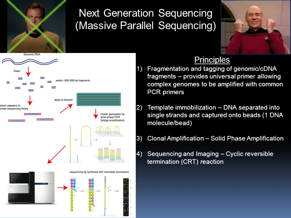 Next Generation Sequencing (Massive Parallel Sequencing)