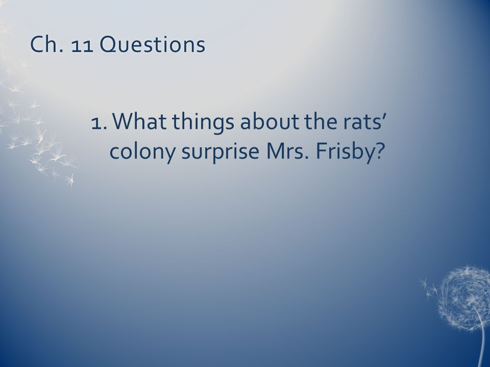 Ch. 11 Questions 1. What things about the rats' colony surprise Mrs. Frisby