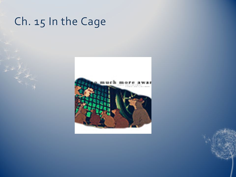 Ch. 15 In the Cage