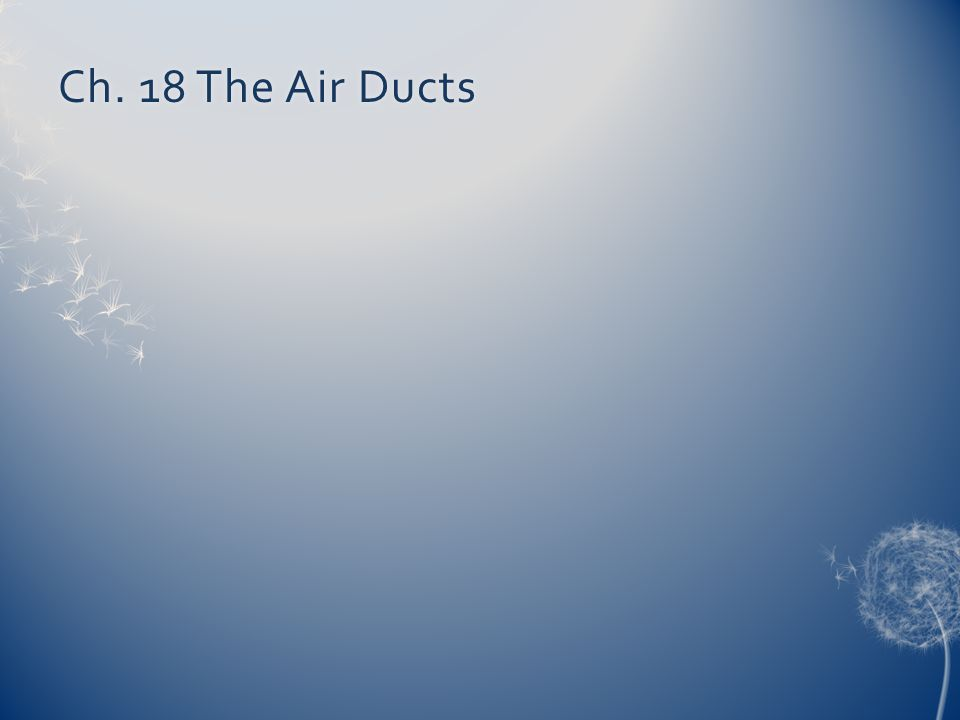 Ch. 18 The Air Ducts