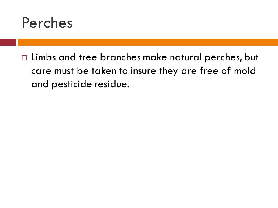 Perches Limbs and tree branches make natural perches, but care must be taken to insure they are free of mold and pesticide residue.